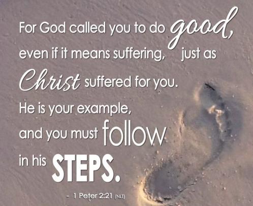 1 Peter 2 21