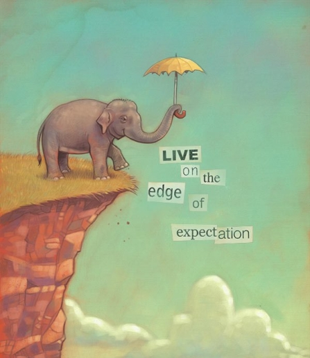 edge-of-expectation-elephant