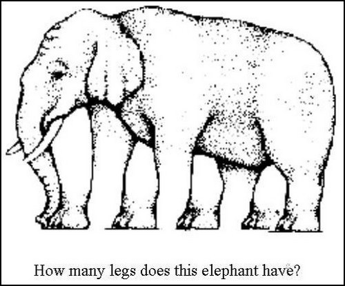 Elephant-Legs-Optical-Illusion